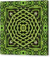 Bamboo Symmetry Canvas Print