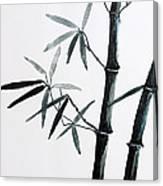 Bamboo Tree Canvas Print
