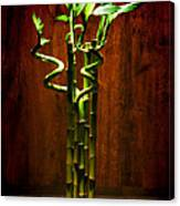 Bambooesque  Canvas Print