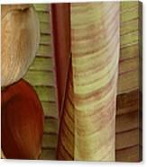 Banana Composition II Canvas Print
