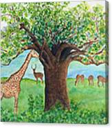 Baobab And Giraffe Canvas Print