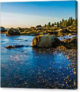 Bar Harbor Coast Canvas Print