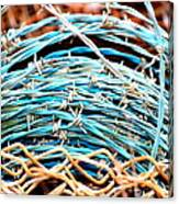 Barbed Blue Canvas Print