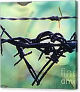 Barbed Wire Love-jealousy 2 Canvas Print