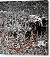 Barbwire Wreath 1 Canvas Print