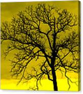 Bare Tree Against Yellow Background E88 Canvas Print