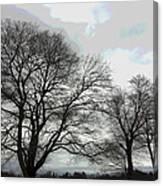 Bare Trees Winter Sky Canvas Print