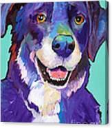 Barkley Canvas Print