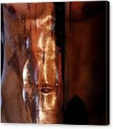 Barmuda Metallic  2 Canvas Print