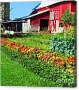 Barn And Garden Canvas Print