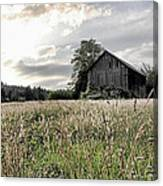 Barn And Grass Canvas Print