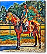 Barn Horse Two Canvas Print