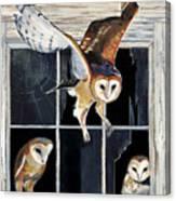 Barn Owl Family Canvas Print