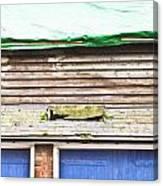 Barn Repairs Canvas Print