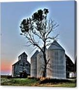 Barn Tree Canvas Print