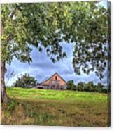 Barn Under A Tree. Canvas Print