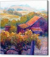 Barn Vineyard Canvas Print