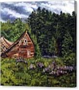 Barn With Purple Flowers Canvas Print