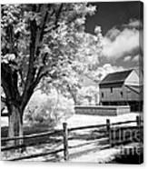Barn Yard Canvas Print
