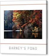 Barney's Pond Poster Canvas Print