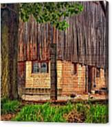 Barnyard 2 Canvas Print