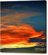 Barracuda Cloud Canvas Print