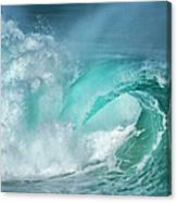 Barrel In The Surf Canvas Print