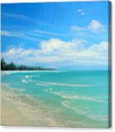 Barrier Island Beauty Canvas Print