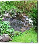 Barriles Small Stream Canvas Print