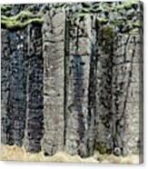 Basalt Columns Canvas Print