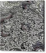 Basalt Topography Canvas Print