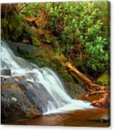 Base Of Laurel Falls Canvas Print