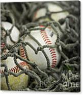 Baseballs And Net Canvas Print