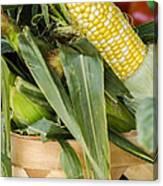 Basket Farmers Market Corn Canvas Print