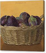 Basket Filled With Figs Canvas Print