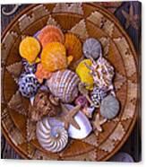 Basket Full Of Seashells Canvas Print