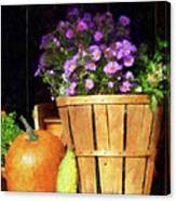 Basket Of Asters With Pumpkin And Gourd Canvas Print