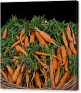 Basket Of Carrots Canvas Print