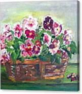 Basket Of Pansies Canvas Print