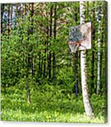 Basketball Forest Court Canvas Print