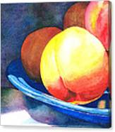 Basking Canvas Print