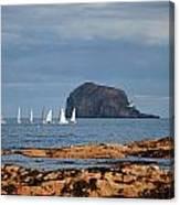 Bass Rock And Sail Boats Canvas Print