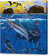 Bat Island Off00139 Canvas Print