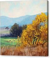Bathurst Landscape Canvas Print