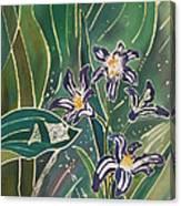 Batik Detail - Pushkinia Canvas Print