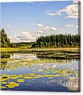 Bay At The Waskesiu Lake With Lily Canvas Print