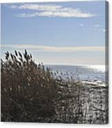 Bay Breeze In Winter Canvas Print
