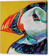 Bay Bulls Puffin Canvas Print