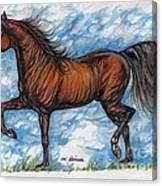 Bay Horse Running Canvas Print
