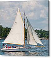 Bay Lady 1270 Canvas Print